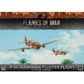 P-40 Warhawk Fighter Flight 0