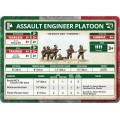 BBersaglieri Assault Engineer Platoon 7