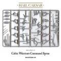 Hail Caesar - Ancient Celts: Celtic Warriors 2