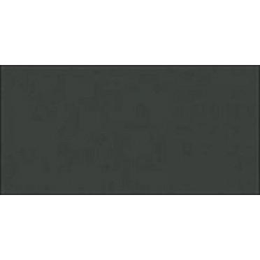 Dark Seagreen (868)