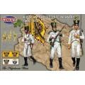 Austrian Napoleonic Infantry 1806-1815 0