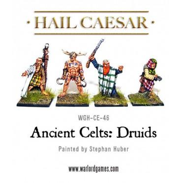 Ancient Celts: Druids
