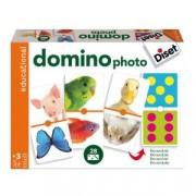 Domino Photo Animals