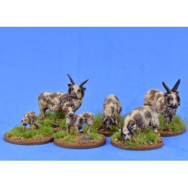 Saga - Civils et bétails - Moutons