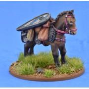 Saga - Civils et bétails - Poney 1