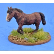 Saga - Civils et bétails - Poney 3
