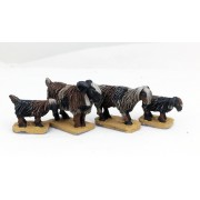 Saga - Civils et bétails - Chèvres orientales