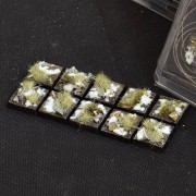 Winter Bases, Square 20mm (x10)
