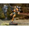 Infinity - Yu Ying - Tiger Soldiers (Spitfire / Boarding Shotgun) 6