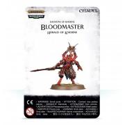 Age of Sigmar : Deamons of Khorne - Bloodmaster Herald of Khorne