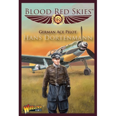 Blood Red Skies - German Ace Pilot Hans Dortenmann