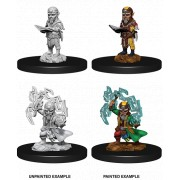 Pathfinder Deep Cuts - Male Gnome Sorcerer