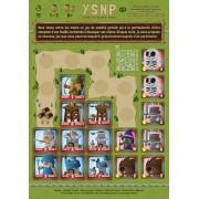 YSNP - Pdf