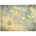 Terrain Mat Mousepad - Realm of Light - 90x90 1