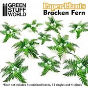 Plantes en Papier - Fougères Pteridium