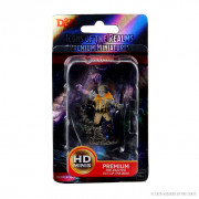 Pathfinder Battles Premium Painted Figures - Male Firbolg Druid