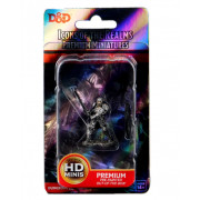D&D Icons of the Realms Premium Figures - Male Human Fighter
