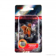 D&D Icons of the Realms Premium Figures - Human Druid Male