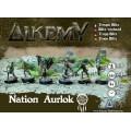 Alkemy - Aurlok - Crow Blitz Warband 0
