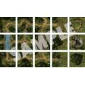 Pathfinder Flip-Tiles: Forest Starter Set 1