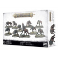 Age of Sigmar : Soulblight Gravelords- Dire Wolves 0