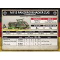 Team Yankee - Panzergrenadier Zug 8