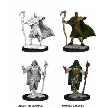 D&D Nolzur's Marvelous Unpainted Miniatures: Human Druid Male