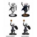 D&D Nolzur's Marvelous Unpainted Miniatures: Changeling Cleric 0
